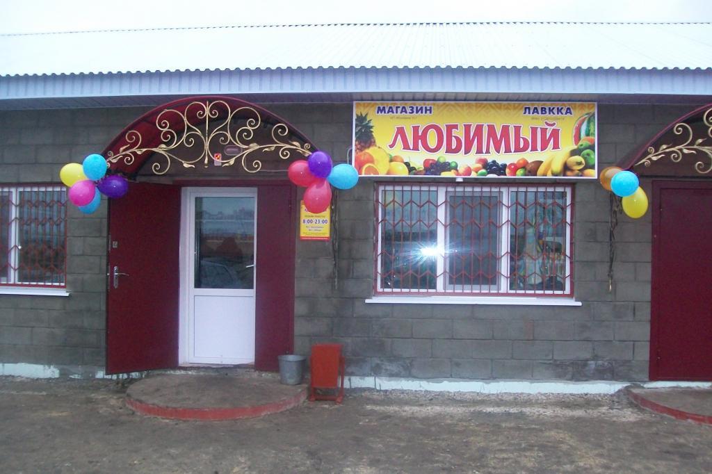 Бизнес план магазин в деревне разведение телят бизнес план