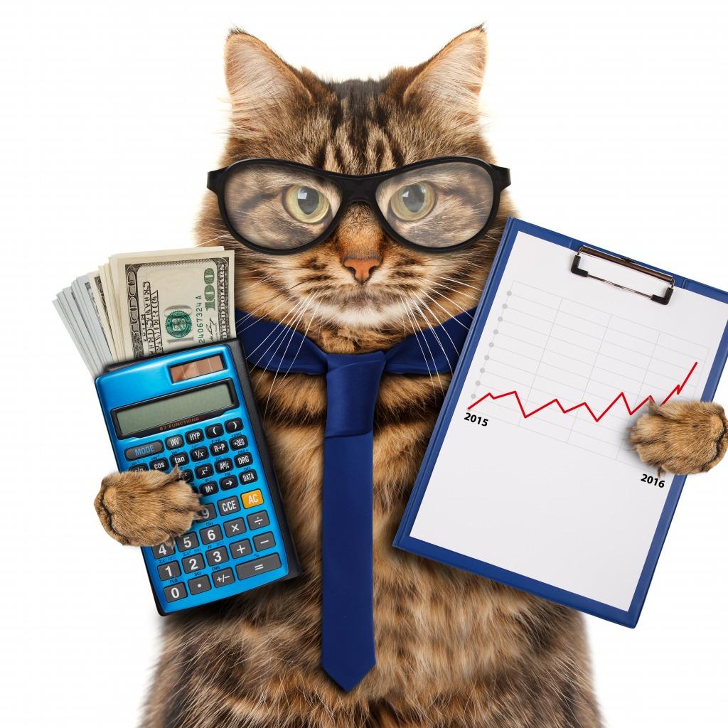 Смешные картинки бухгалтерскому учету, открытки своими руками